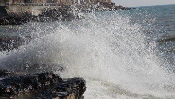 Состоялась региональная встреча по защите морской среды Каспия