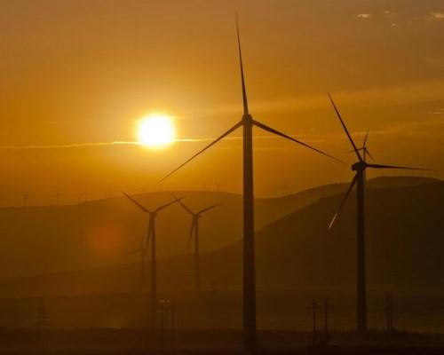 В Мангистау развивается «зеленая» энергетика