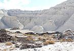 В Мангистауской области уникальные белые скалы превращают в помойку для нефтешлама